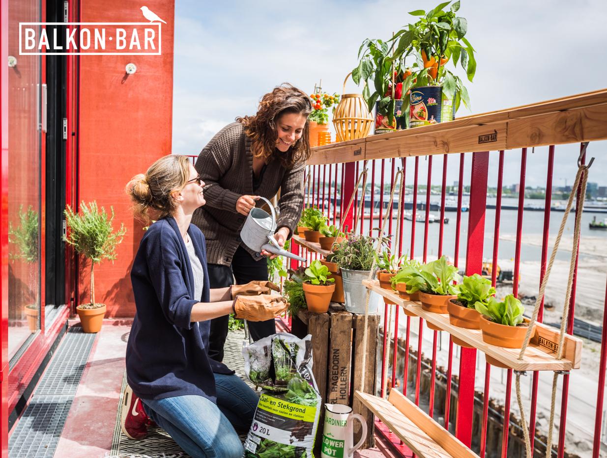 Alle ruimte voor een moestuin op je balkon met de hangtuin nieuws - Alle tuin ...